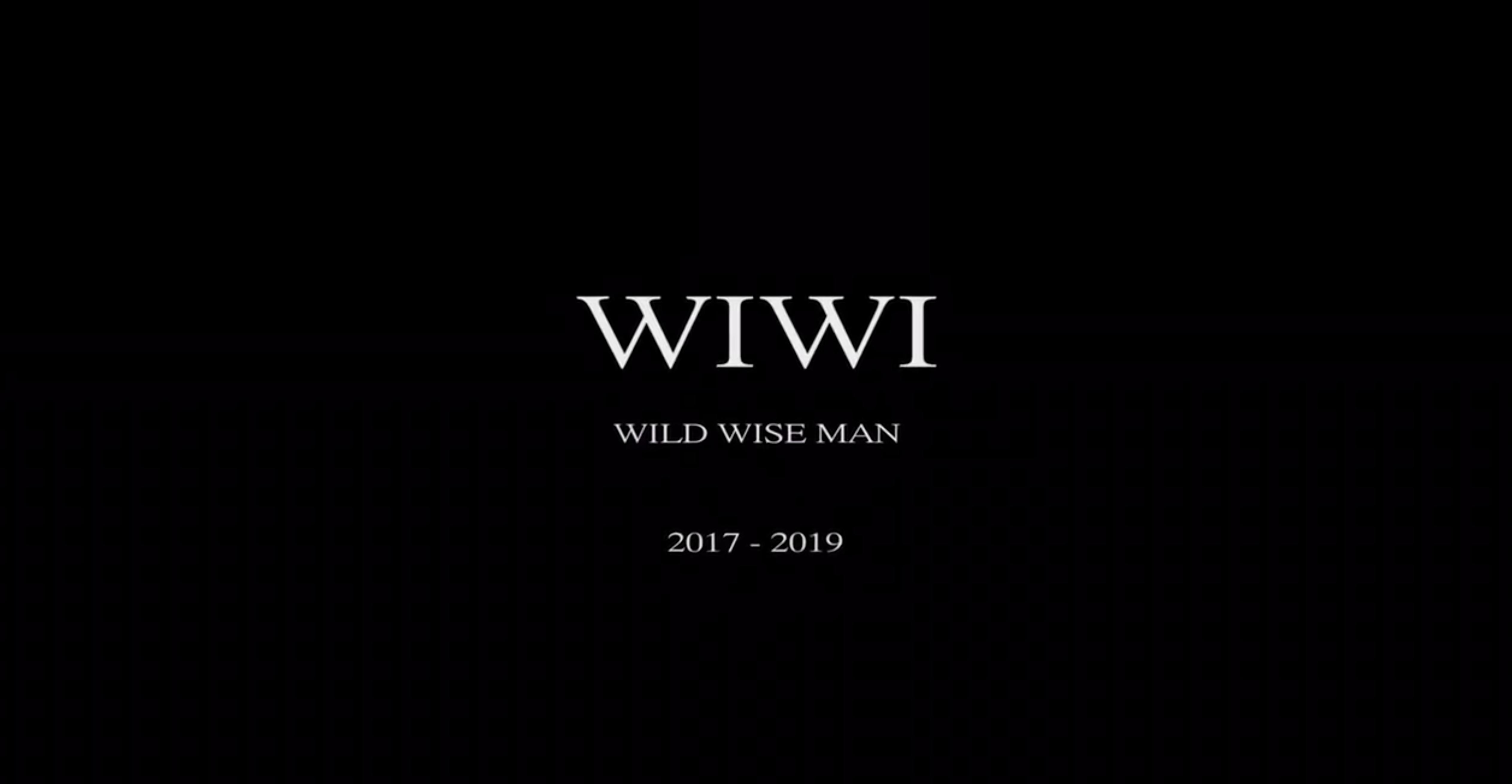 wiwi_o